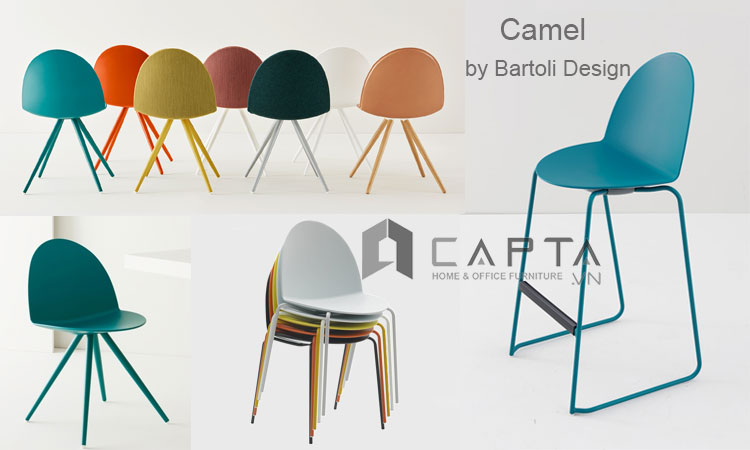 Camel Chair &Camel Bar Chair | CAPTA.VN